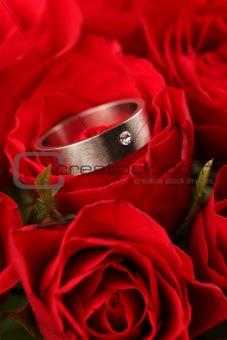 Titanium engagement ring in red rose
