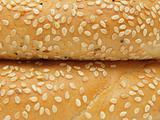 Closeup of two bagels with sesame seeds