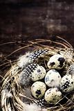 Birds nest with eggs (easter composition)