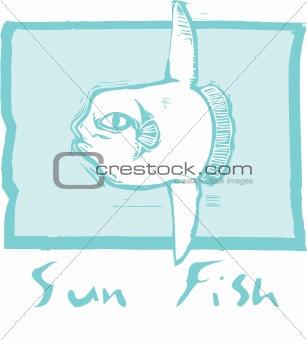Sunfish in Blue