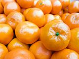 mandarine background close up