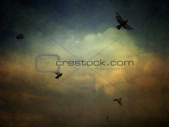 grunge cloudy sky background with birds