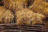 hay at haylofts