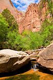 Zion creek