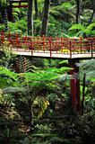 Monte Palace Tropical Garden - Monte, Madeira