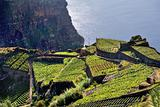 South coast of Madeira island, Rancho - Portugal