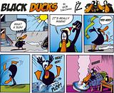 Black Ducks Comics episode 22