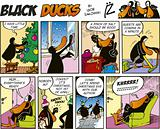Black Ducks Comics episode 26