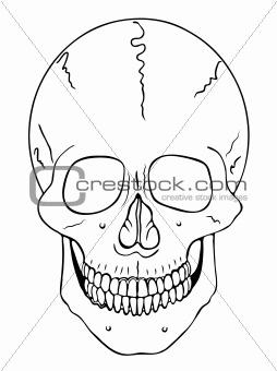 smiling skull - vector