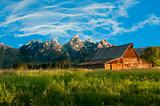 Tetons &amp; wildlife