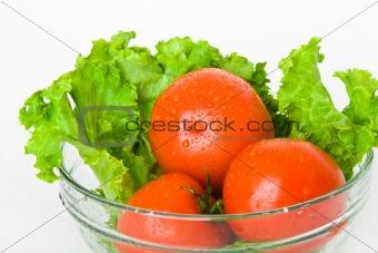 tomato and lettuce