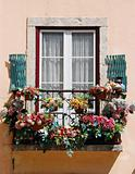 Lisbon´s window balcony