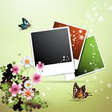 Photos collection
