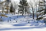 Winter in cemetary