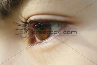 Asia eye