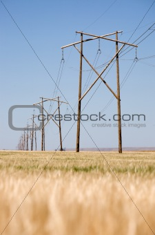 Prairie Power Line