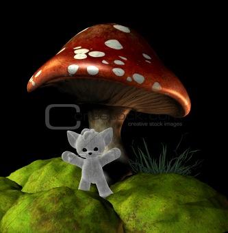 mushroom teddy