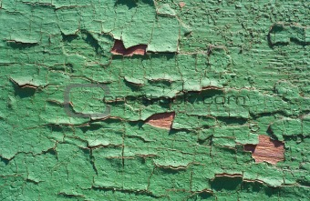 Old wood painted green color