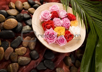 Zen & Spa  roses