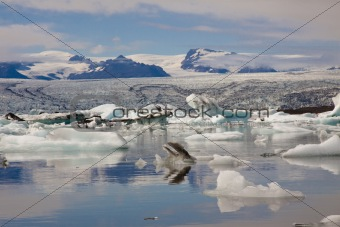 Jokulsarlon lake - Iceland. Summer day.
