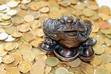 Feng Shui Frog and coins