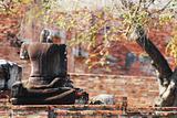 Buddha statues damaged Ayutthaya