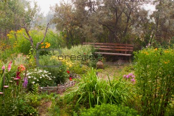 Forgotten garden yard in fog.