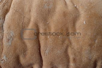 Bread texture