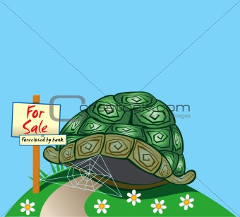 Foreclosed Turtle home