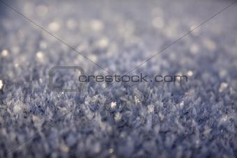 Blue Hoar Frost