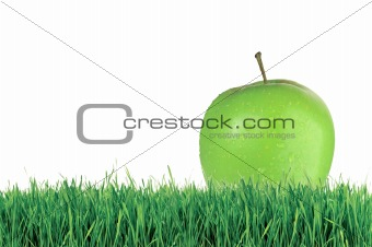 Green apple on green grass over white background