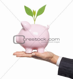 Protect your mone. Financial concept - piggy bank in woman hand