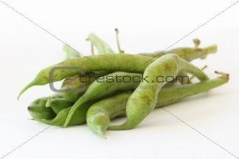 Green bean pods detail