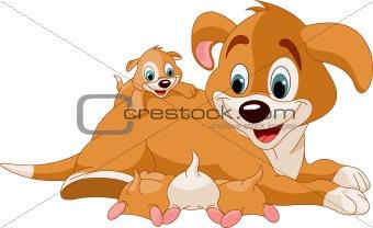 Mother dog  nursing cute puppies
