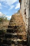 grassed stairs