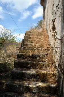 grassed stairs