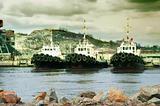 Sea tows