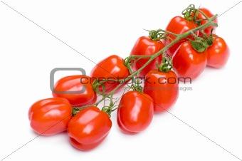 tomato on white close up