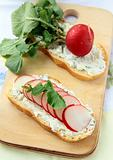 sandwiches with radishes and cottage cheese