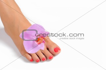 Beautiful feet leg with perfect spa pedicure on bright pink nail