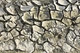 Dry soil with cracks
