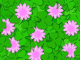 Shamrock Paper Cutting Clover Flowers Background