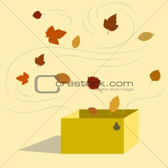 Autumn From Box