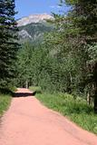Colorado Hiking Trail