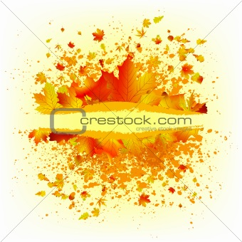 Autumn leaves background card template. EPS 8