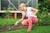 young pretty gardening woman with rakes outdoors near greenhouse
