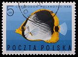 Poland - CIRCA 1967: A stamp - Vermiculated angel