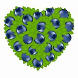 Heart From Bilberry
