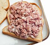 Open Face Tuna Salad Sandwich