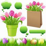 Spring Set